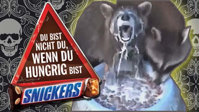 raccoons-snickers-du-bist-nicht-du-wenn-du-hungrig-bist