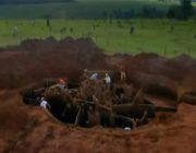 Riesiger Ameisenhügel ausgegraben - Größte Ameisennest der Welt