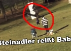 steinadler-reisst-baby-golden-eagle-snatches-kid