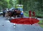 Morrorcrash Motorrad rast gegen Kutsche Biker und zwei Pferde tot-cover