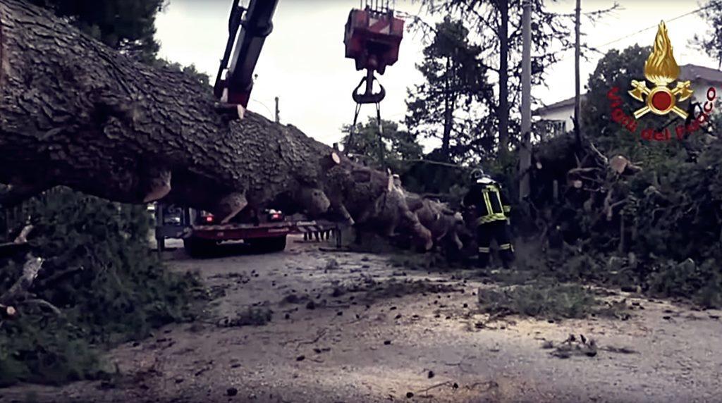 unwetter-in-italien-halgelkörner-so-groß-wie-orangen-feuerwehr-beseitigt-bäume-riesige-kräne-im-einsatz